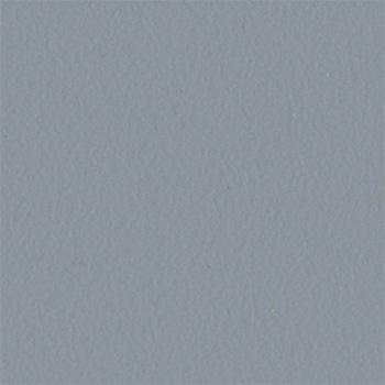 Srebrnoszary gładki