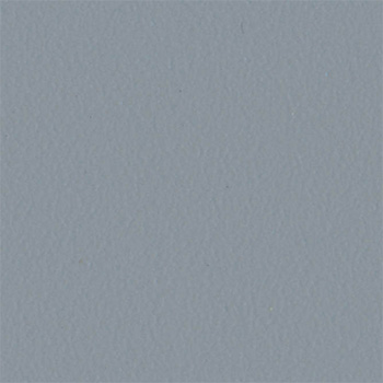srebrnoszary gladki
